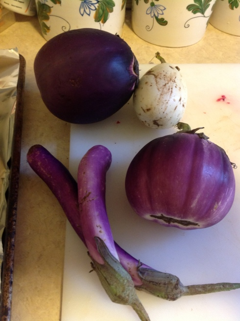 Eggplants from the CSA, including a white one and some long Japanese ones