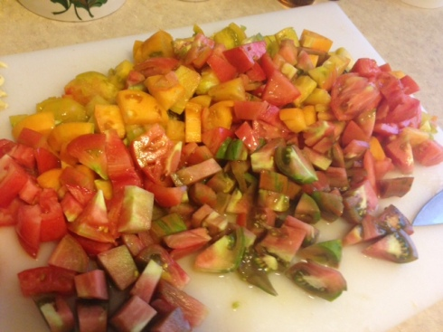The rainbow coalition of tomatoes